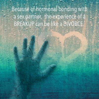 Because of hormonal bonding with a sex partner, the experience of a BREAKUP can be like a DIVORCE.